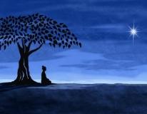 L'Advaita Vedanta - Sezione avanzata