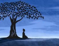 Vivere Zen - cambiare in consapevolezza
